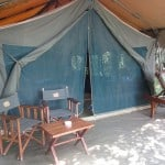 glamping-safari-tents