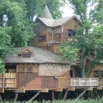 glamping-treehouses